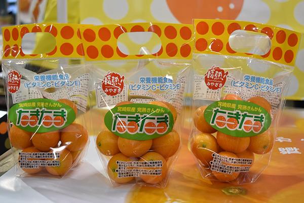 宮崎ブランドの完熟きんかん「たまたま」が解禁 令和2年の販売スタート ...