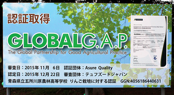 GLOBALG.A.P.認証取得