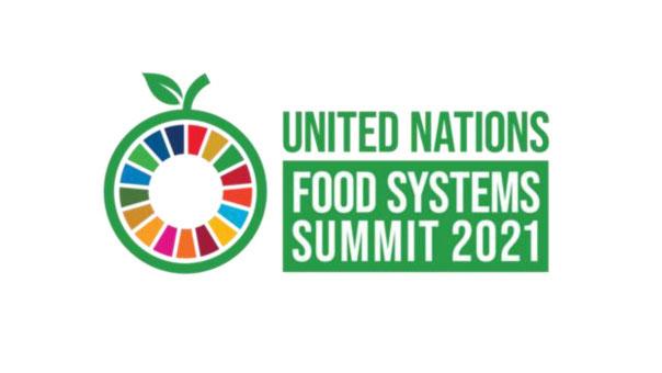 国連食料システムサミット.jpg