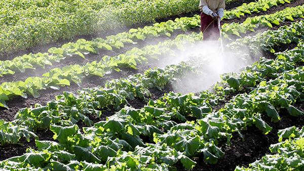 安全な農薬使用を推進