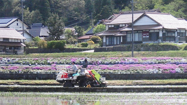 農村づくりに人材育成 新しい農村政策検討会-農水省