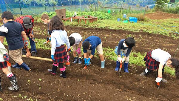 インターナショナルスクールと農教育プロジェクト始動ーアグリメディア