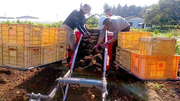 農業実践力養成科で農業を学ぶ学園生
