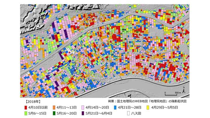 地球観測衛星データを用いて作成した2018年の水田取水開始時期マップ(茨城県稲敷市の一部)