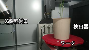 X線CTでポット植え作物の根を非破壊で可視化 農研機構