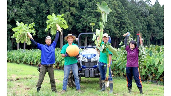 「THE FARM」での収穫体験の様子