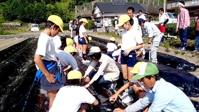 「食育」で給食用の野菜を栽培する学童(JA静岡市提供)