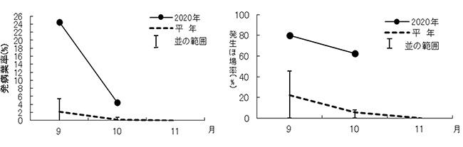 「黒斑・褐斑病の発病葉率の推移」「 黒斑・褐斑病の発生ほ場率の推移」