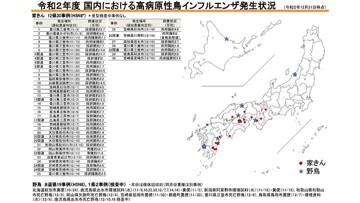 鳥 インフルエンザ 日本