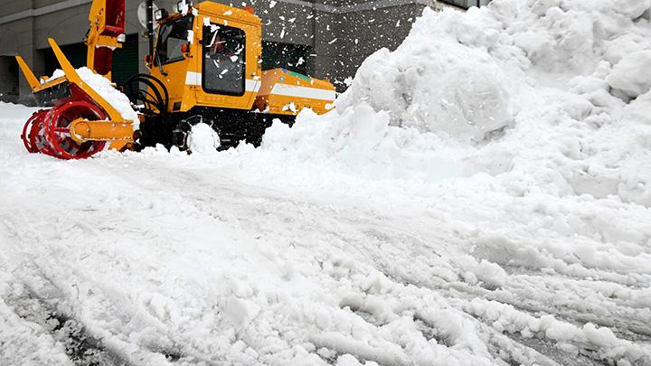 大雪の農林水産被害33億円-農水省