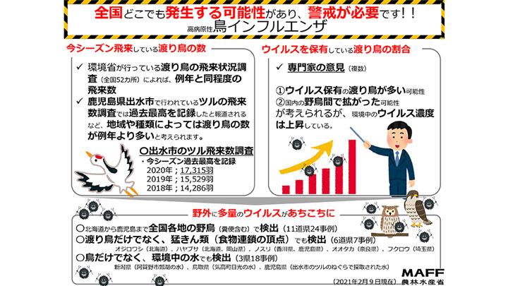 【鳥インフル】千葉県 9、10例目発生-殺処分400万羽超