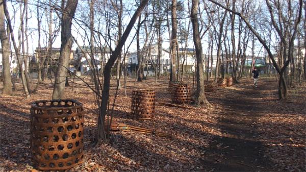 大都市近郊に今も息づく武蔵野の落ち葉堆肥農法