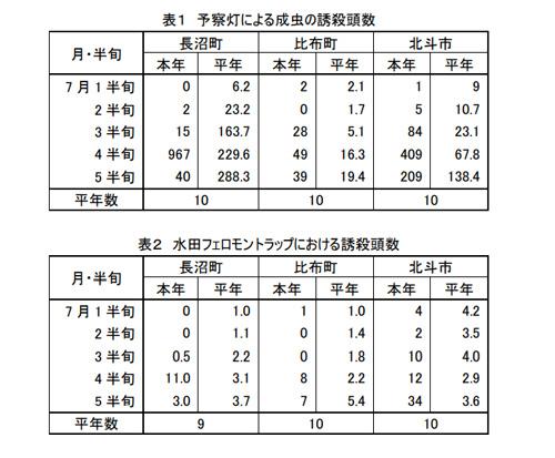 水稲のカメムシ多発に注意 北海道