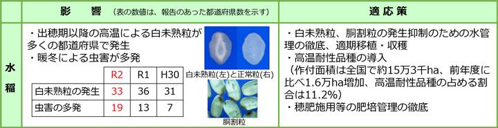 【地球温暖化影響】出穂期以降の高温で白未熟粒-令和2年の気象と作物