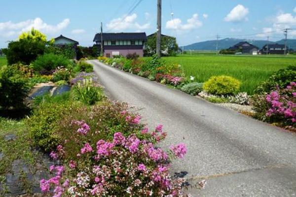 農林水産大臣賞・個人部門の宮野裕子さんの取組