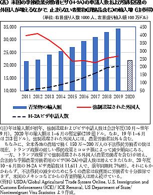(表) 米国の季節農業労働者ビザ(H-2A)の申請人数および強制送還の 外国人が増えるなかで、止まらない青果物(調整品含む)の輸入増 (注参照)