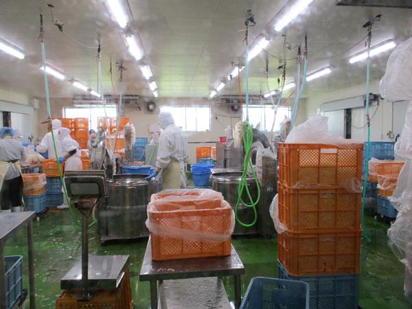 野菜カット工場