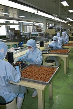 衛生管理を徹底した加工場の選別作業(中芳養加工場)