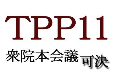 TPP11衆院本会議で可決