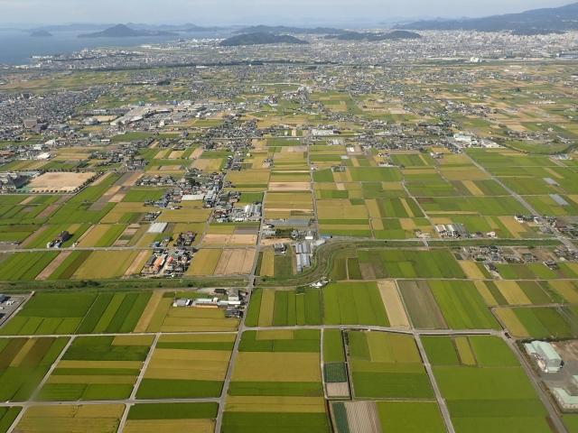 担い手への農地集積 伸び鈍化-...