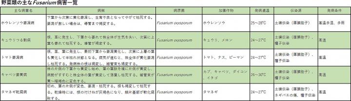 野菜類の主なFusarium病害一覧