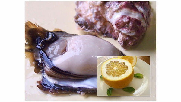 持続可能な地域へ天草の漁師とみかん農家がコラボ 岩牡蠣×柑橘をセット販売