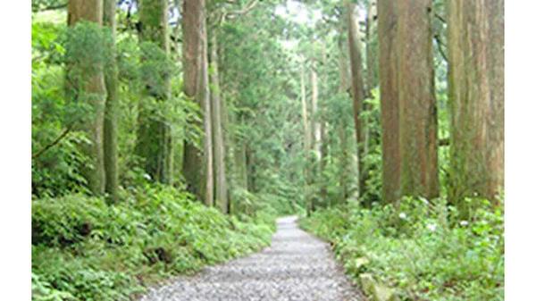 飲料の一部売上金を環境保護費用として箱根町に寄付-小田急電鉄