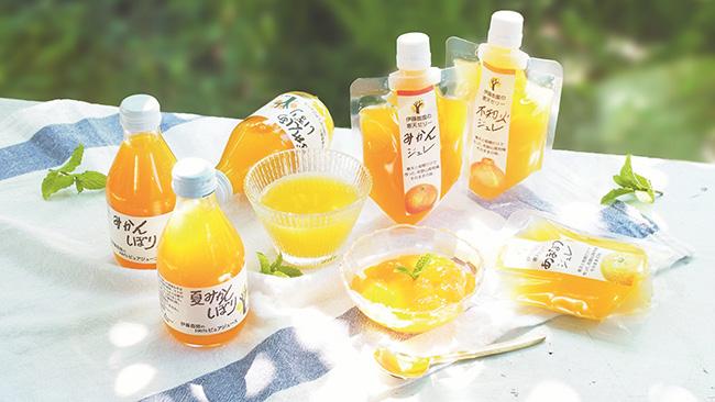 和歌山県産かんきつをたっぷり使ったストレートジュースや寒天ジュレ