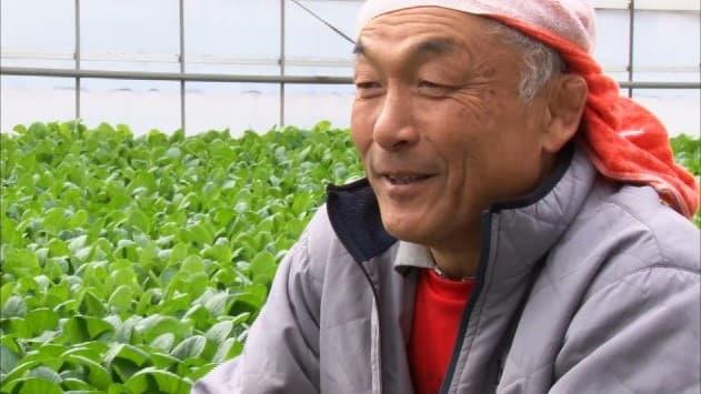 2019年1月に放送された平野さん(千葉県)の「小松菜」