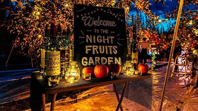 りんご畑で幻想体験「夜の果樹園」が福島ふるさと納税に登場