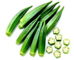 鮮やかな果色が長持ち、オクラ「ずーっとみどり」の種子発売 サカタのタネ