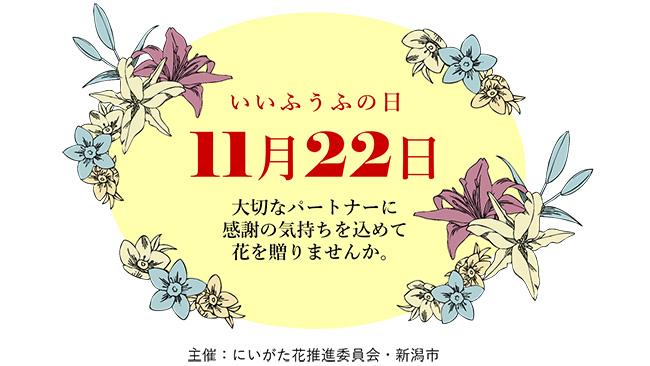 「いい夫婦の日」に新潟産の花を 市内各所でフラワーギフトなど展示