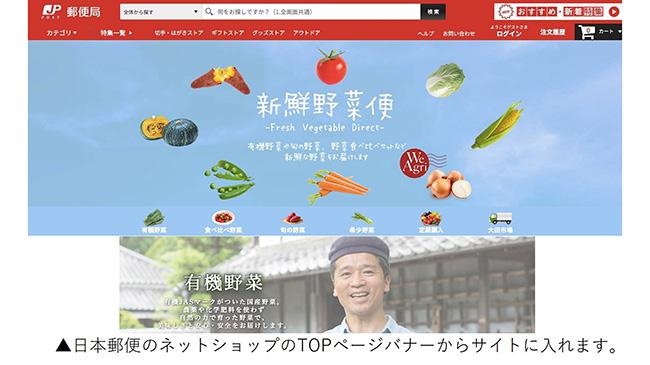 日本郵便のネットショップに旬の新鮮野菜を届ける「新鮮野菜便」開設