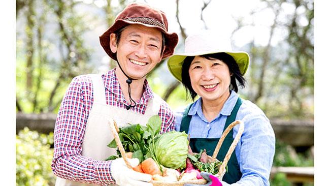 お気に入り農家から野菜が届く「ゴヒイキ」定期リクエストに2種類追加