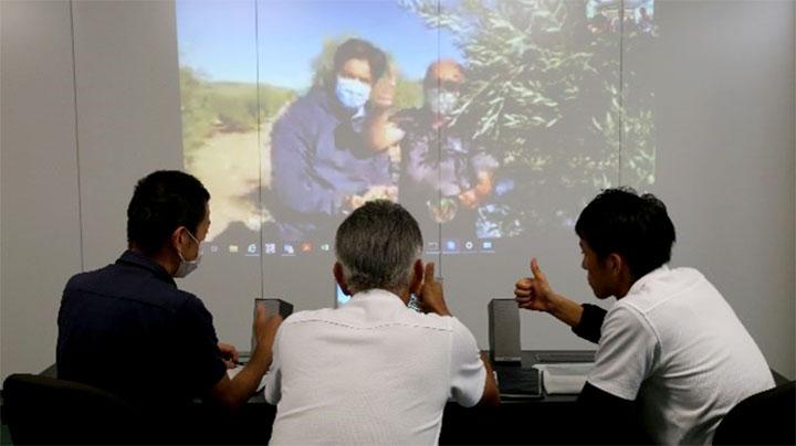 オンライン会議でオリーブ収穫の様子