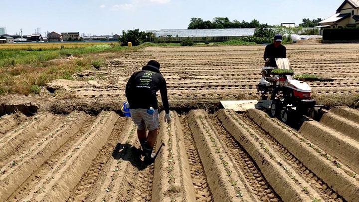 農業の人材マッチング「農How」愛媛県でサービス開始 アグリトリオ