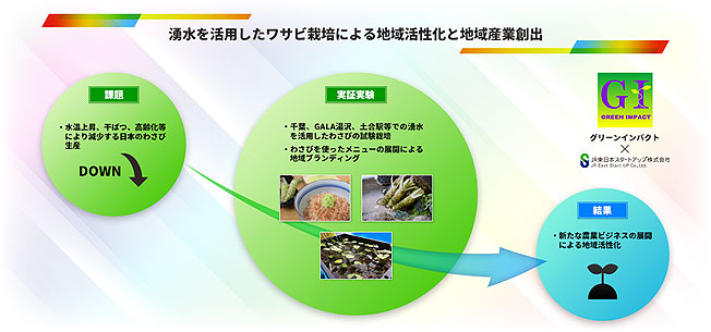 JR東日本沿線の湧水を活用し「鉄道わさび」栽培へ 実証開始