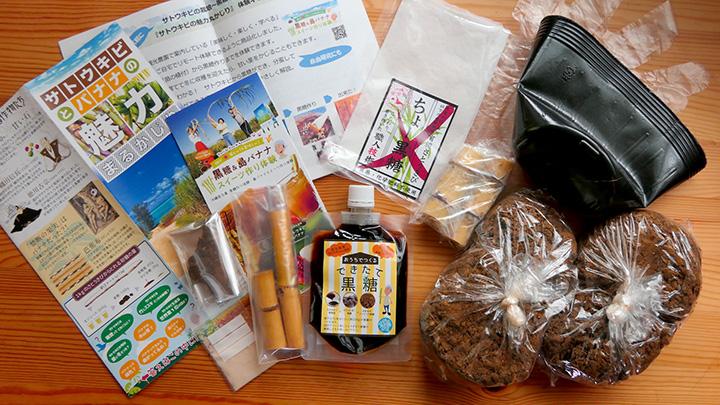 宮古島のサトウキビ畑から「オンライン農体験」実施