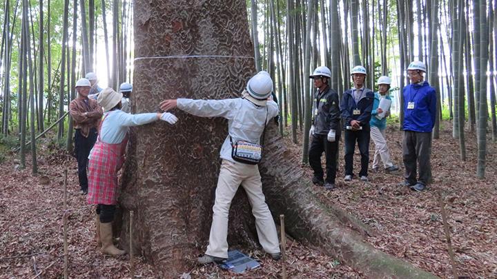 18年間の緑の活動で「ちば里山アワード」大賞を受賞 松戸市