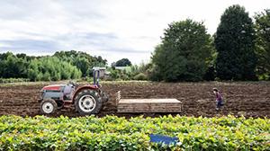 埼玉県北本市の暮らしと農業を体験 オンラインツアー開催