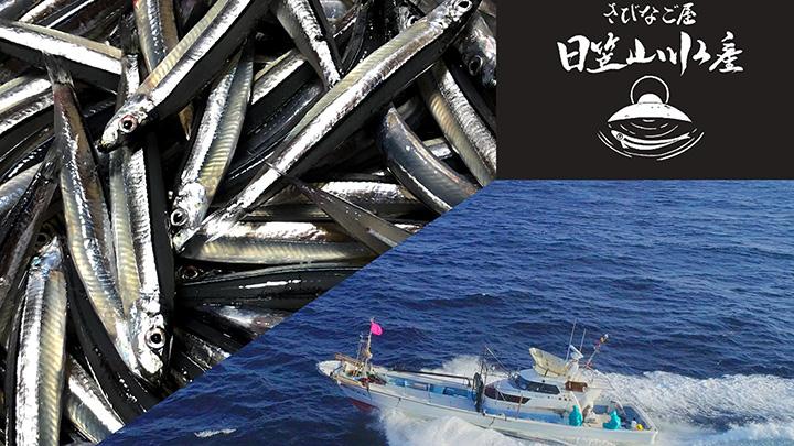 鹿児島県の生産者支援第2弾 甑島のきびなご漁師親子の挑戦 CF募集