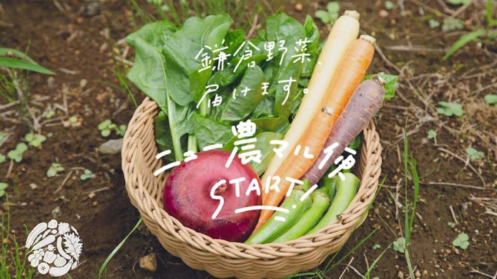 鎌倉で新しい農業を「ニュー農マル」第2期プロジェクト4月スタート