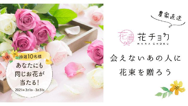 贈り主にも当たる「花チョク」春のギフトキャンペーンを開始 食べチョク