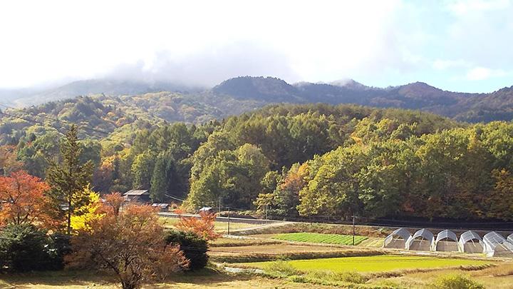 山之村の風景