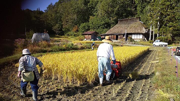 「にほんの里100選」に選ばれた古き良き日本の景観を楽しめる