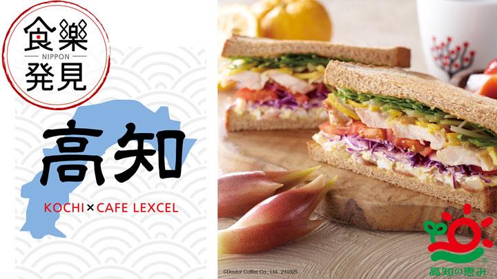 「NIPPON食樂発見in高知」キャンペーン実施 ドトールとJAグループ高知など