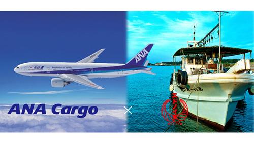 商流拡大と生鮮品の当日配送へ ANA Cargoとサードコンパスが業務提携