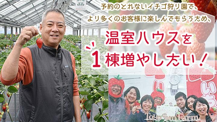 「温室ハウス1棟増やしたい」いちご農家がクラウドファンディング実施