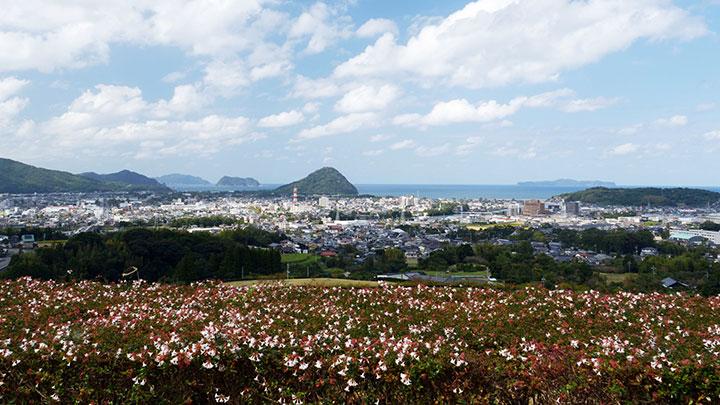 山口・萩の日本酒が地理的表示「GI」に指定