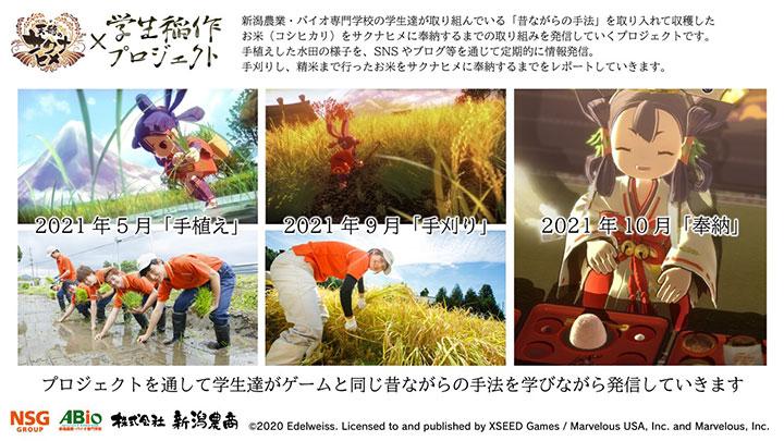 「天穂のサクナヒメ×学生稲作プロジェクト」